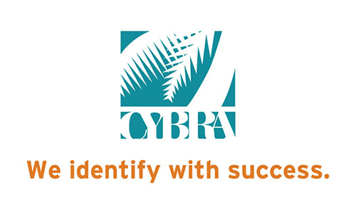 Cybra We Identify with Success